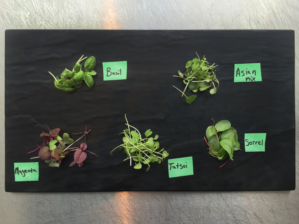Using microgreens as a fine dining chef is essential due to their distinctive flavors and how visually stunning these herbs look on a gourmet dish.